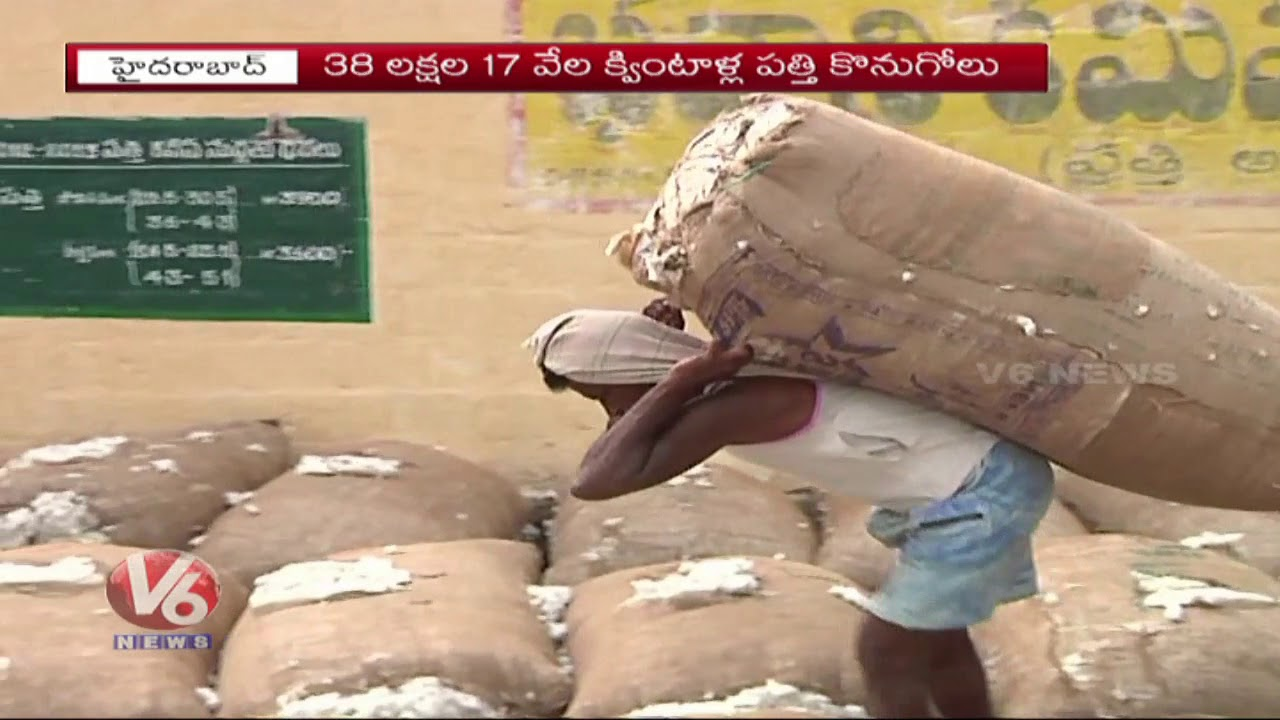election-effect-on-cotton-crop-farmers-facing-problems-with-minimum-support-price-v6-news