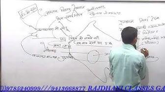 Raj.gk class-4 live