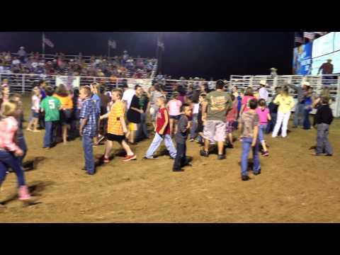Wills Point Rodeo