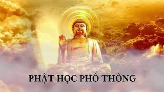 ❤22 tập Phật học phổ thông phần 16❤