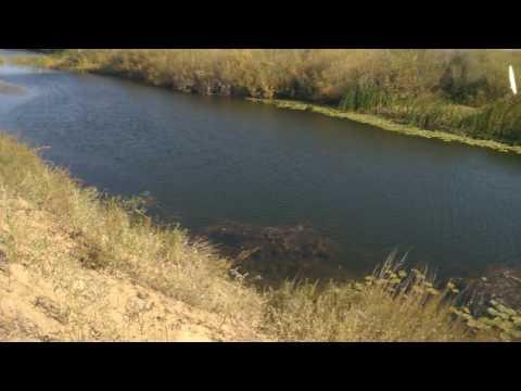 рыбалка на реке иргиз в казахстане