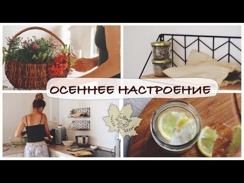 МОТИВАЦИЯ НА УБОРКУ И УЮТ* Декор кухни * ЗАГОТОВКИ НА ЗИМУ * Включи уют