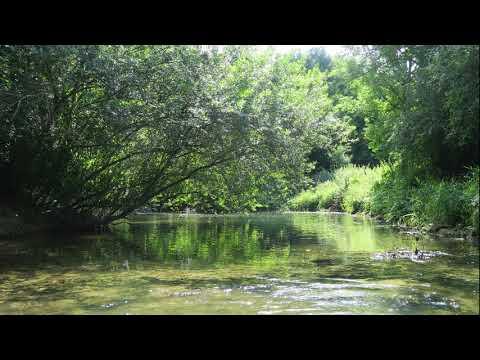 La source de la Seine