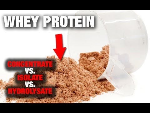 Whey Protein:  Everything You Need To Know!