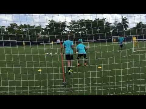 Goalkeeper Training Incorporating Low Diving and Distribution, By Andrew Sparkes, Swansea City FC