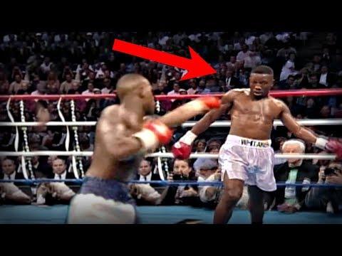 Amazing Boxer With