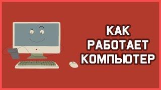 edu: Как работает компьютер