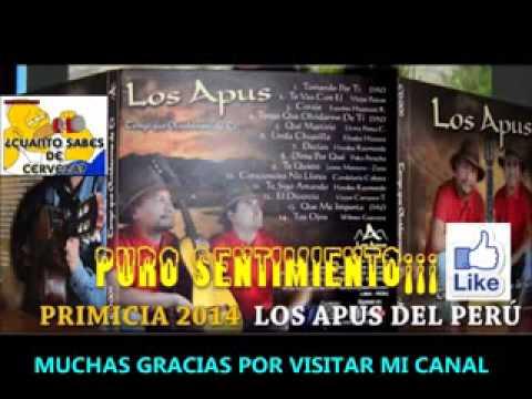 LOS APUS DEL PERU 2015     MIX DE ORO      COMPLETO   CANCIONES PRIMICIAS