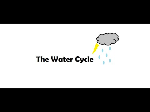 Your Kid will never forget about Water cycle again. Science Class 6