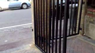 Metal Fence Gate Design Carteret Nj. (800)576-5919