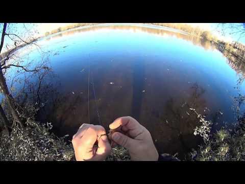 ловля рыбы на канале им москвы видео