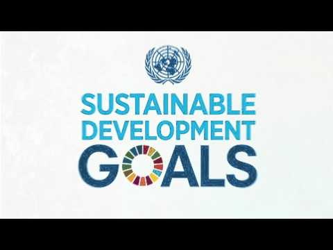 Transitioning from the Millenium Development Goals to the Sustainable Development Goals