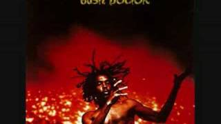 Peter Tosh - Pick Myself Up