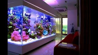 15 Rooms With Stunning Aquariums