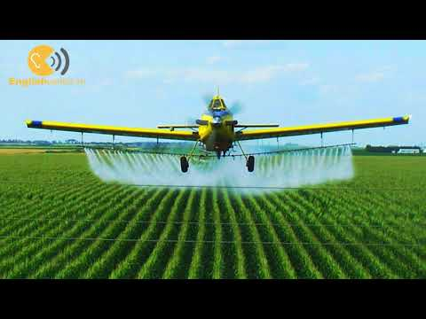 Englishcenter.vn - L2 - Farms - Growing Crops