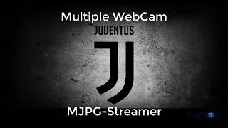 Multiple Webcam MJPG Streamer Pulpstone OpenWrt LEDE