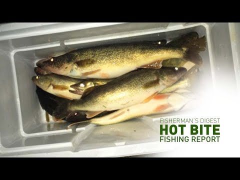 Saginaw River Fishing And Ice Fishing Reports - Hot Bite Fishing Report - Feb 25th
