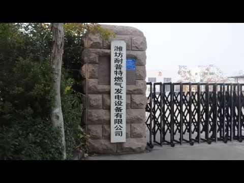 Shandong naipute gas power co., LTD