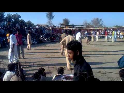 Saggu Wali Ball Match Travel Video