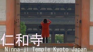 仁和寺 京都市 2018 Ninna-ji Temple Kyoto Japan
