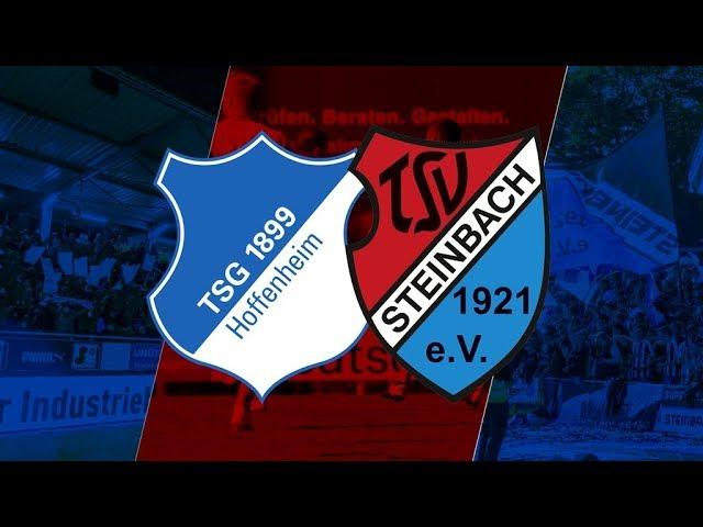 TSG 1899 Hoffenheim II  - TSV Steinbach Haiger 1:2 (Regionalliga Südwest 2018-19)