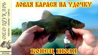 Рыбалка на поплавочную удочку. Конец июля