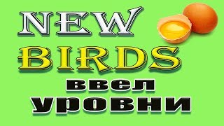 new birds ввел уровни