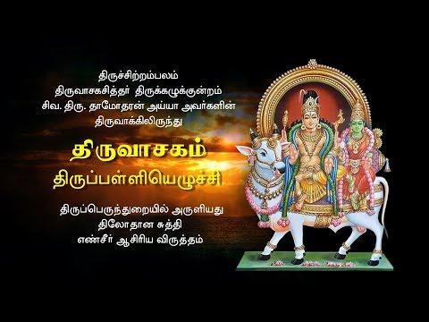 திருவாசகம் - திருப்பள்ளியெழுச்சி   | Thiruvasagam - Thirupalliyezhuchi | சிவ.தாமோதரன் ஐயா