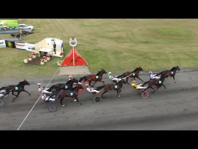 HANOVER SHOE FARMS VDM COLTS FINAL 2017
