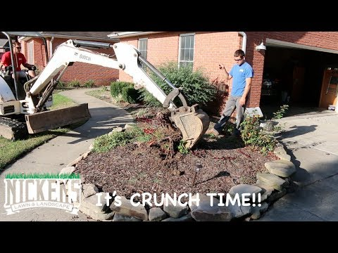 another-landscape-renovation,-shrub-and-tree-removal