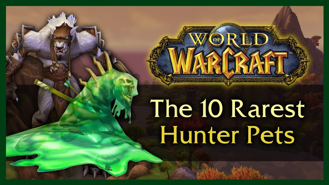 The 10 Rarest Unobtainable Hunter Pets Wow 8 0 1 Youtube
