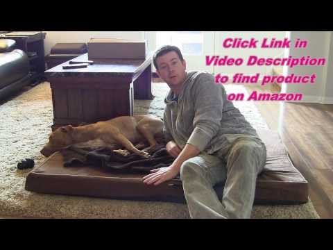 dog-bed-depot-memory-foam-dog-bed---review-&-demo---removable-washable-cover