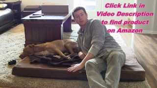 Dog Bed Depot Memory Foam Dog Bed - Review & Demo - Removable Washable Cover
