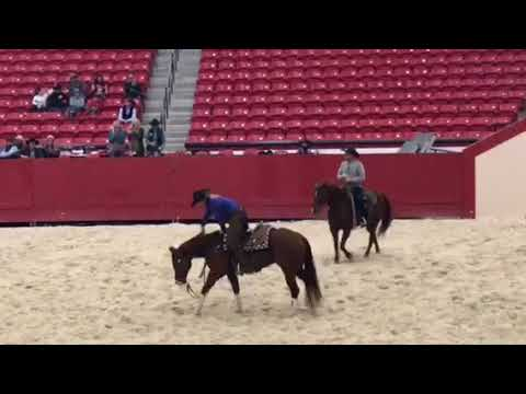 Cutting Horse Show National Finals Winner