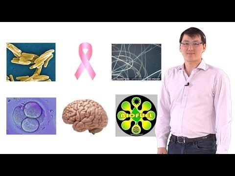Synthetic Biology: An Emerging Engineering Discipline - Timothy Lu