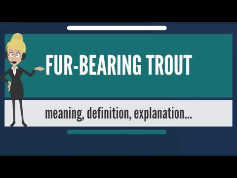 What is FUR-BEARING TROUT? What does FUR-BEARING TROUT man? FUR-BEARING TROUT meaning