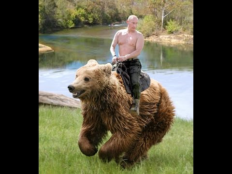 Frank Holmes: Politicially Engineered Oil Price Drop Hurts Putin & Russia