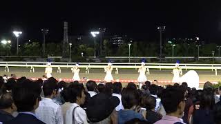 東京トゥインクルファンファーレ 大井11R 第63回東京ダービー 2017.6.7