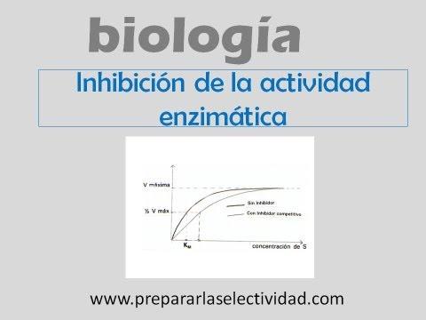 Inhibidores de la actividad enzimática