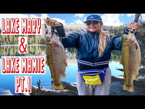 NEW   FAVORITE SPOT   LAKE MARY   LAKE MAMIE   MAMMOTH LAKES FISHING