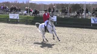 Alexander Bontemps and Katie Riddle - Thermal 2014 Wk 3 - $25,000 SmartPak Grand Prix