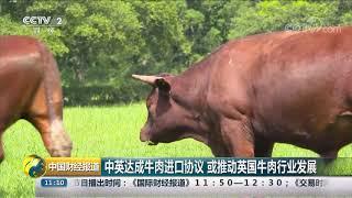 [中国财经报道]中英达成牛肉进口协议 或推动英国牛肉行业发展| CCTV财经