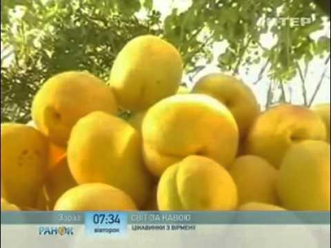 Мир за кофе - Армения: телеканал Интер