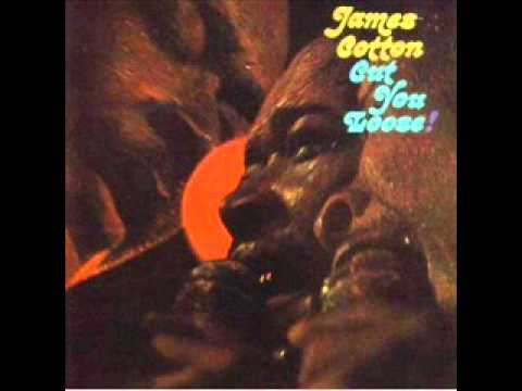 James Cotton / Ain't Nobody's Business.wmv mp3