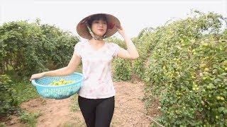 Phim Hài 2017 | Gái Làng Dồn Full HD | Phim Hài Mới Hay Nhất 2017