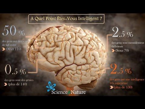✔ Le Top 10 des Personnes les Plus Intelligentes du Monde