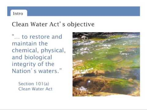 Clean Water Act 101