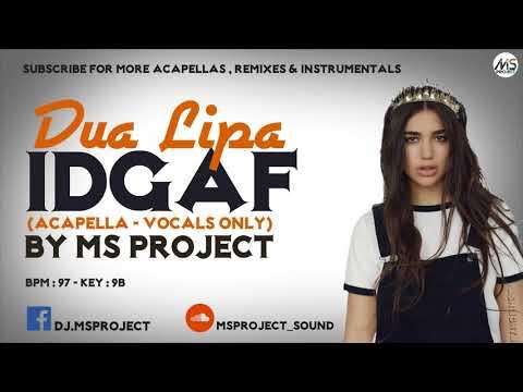 Dua Lipa - IDGAF (Acapella - Vocals Only)