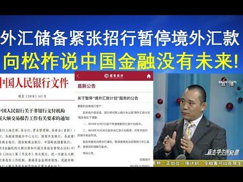 视频:外汇储备紧张招行暂停境外汇款、向松柞说中国金融没有未来!