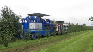 Kombajn Korvan OXBO po modernizacji Korvan OXBO harvester after modernization